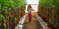 פסח: 10 רעיונות לבילוי עם הילדים