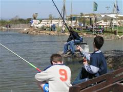 פארק דיג