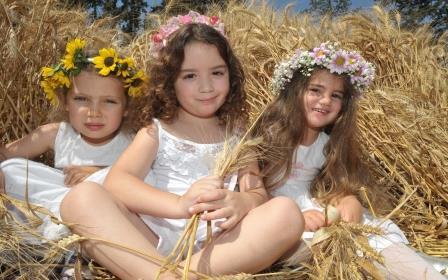 festival-halav-udvash