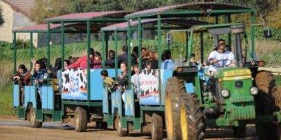 פעילות לילדים בכפר ירוק